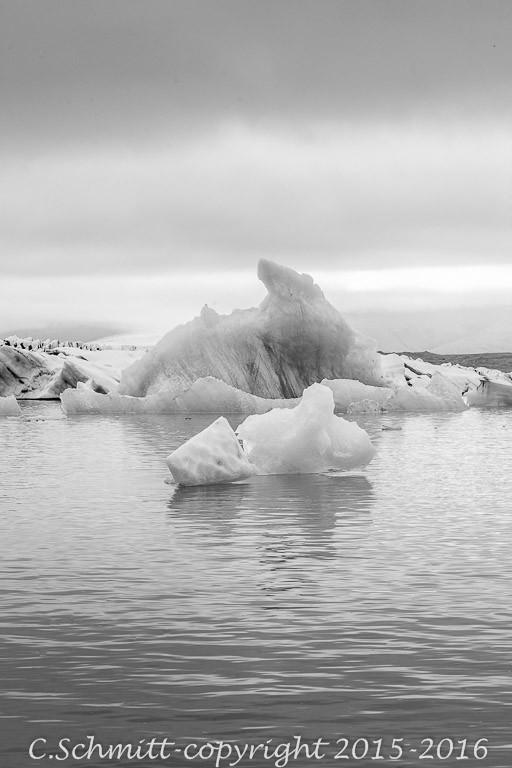 Icebergs au lagon de Jokulsarlon sud Islande photo noir et blanc
