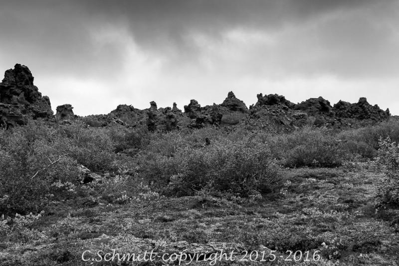 Paysage de lave et végétation rase à Dimurborgir sud Islande photo noir et blanc