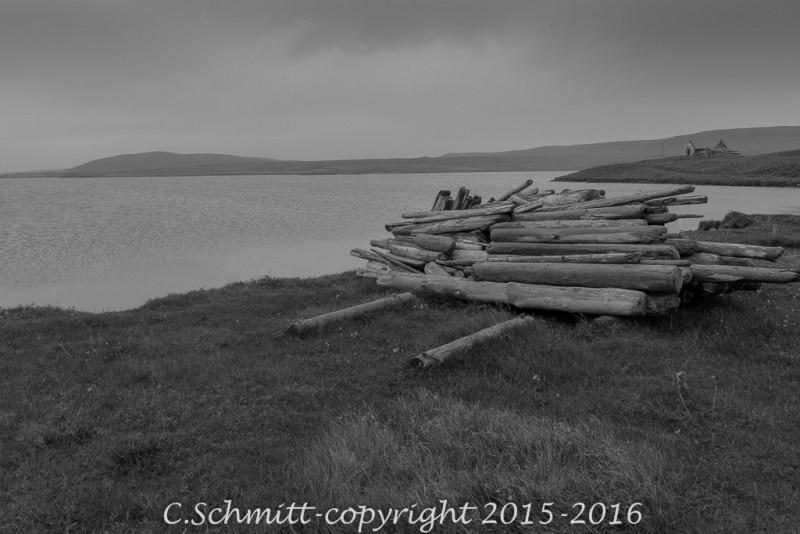 Sous le cercle polaire tas de bois flotté à Raudinapur extrême nord de l'Islande photo noir et blanc