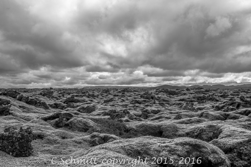 mousses d'Islande sur la lplaine de lave sous le ciel nuageux photo noir et blanc