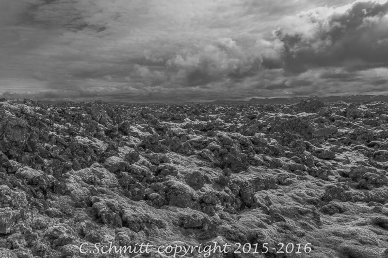 Plaine de lave du Lakagiggar au sud de l'Islande couverte de mousses photo noir et blanc