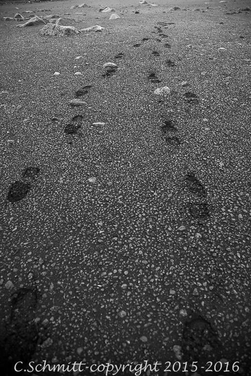 empreintes de pas sur une autre planète centre Islande photo noir et blanc